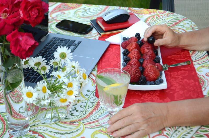 Starsza kobieta je świeże jagody i freelance pracować na laptopie w lato ogródzie fotografia royalty free