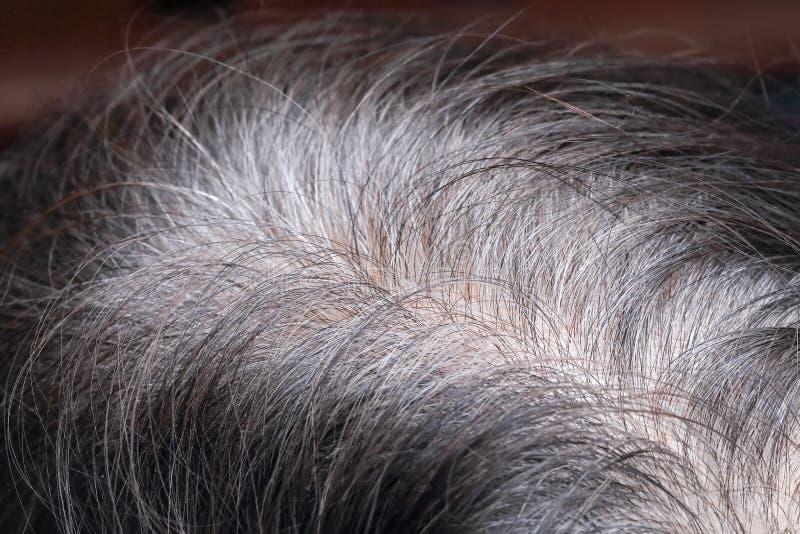 Starsza kobieta pokazuje ona szarego włosy fotografia stock