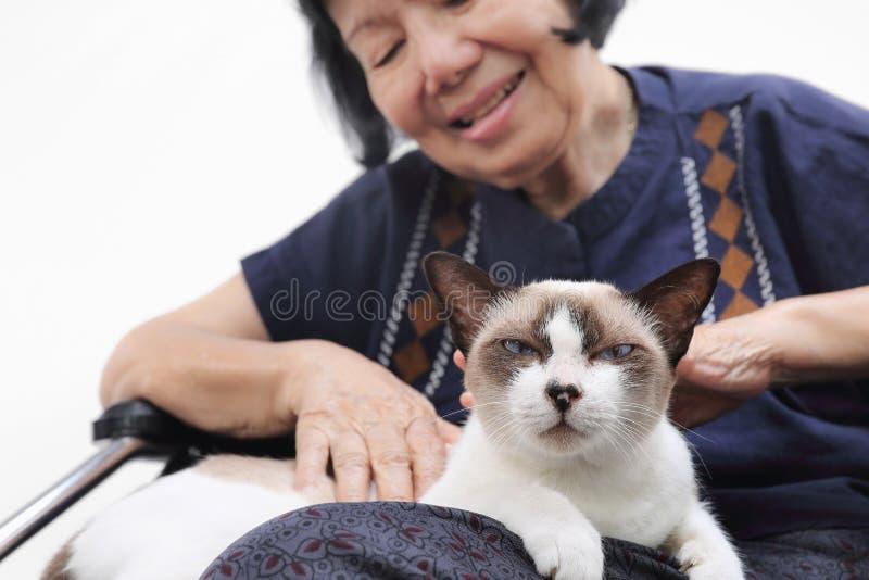Starsza kobieta relaksująca z jej kotem obrazy royalty free