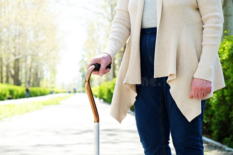 Starsza kobieta w parku na słonecznym dniu zdjęcie royalty free