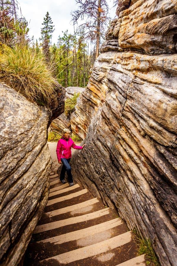 Starsza kobieta wspina się stromego schody który iść z wierzchu Athabasca Spada canyo obraz stock