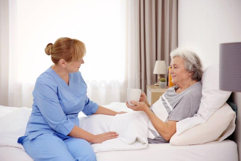 Starsza kobieta z opiekunem zdjęcie royalty free