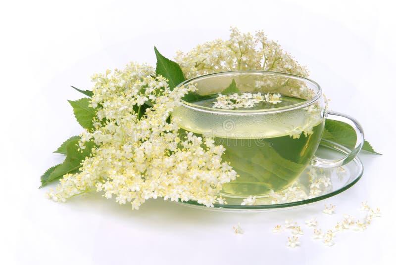 Starsza osoba herbaciany kwiat obraz stock
