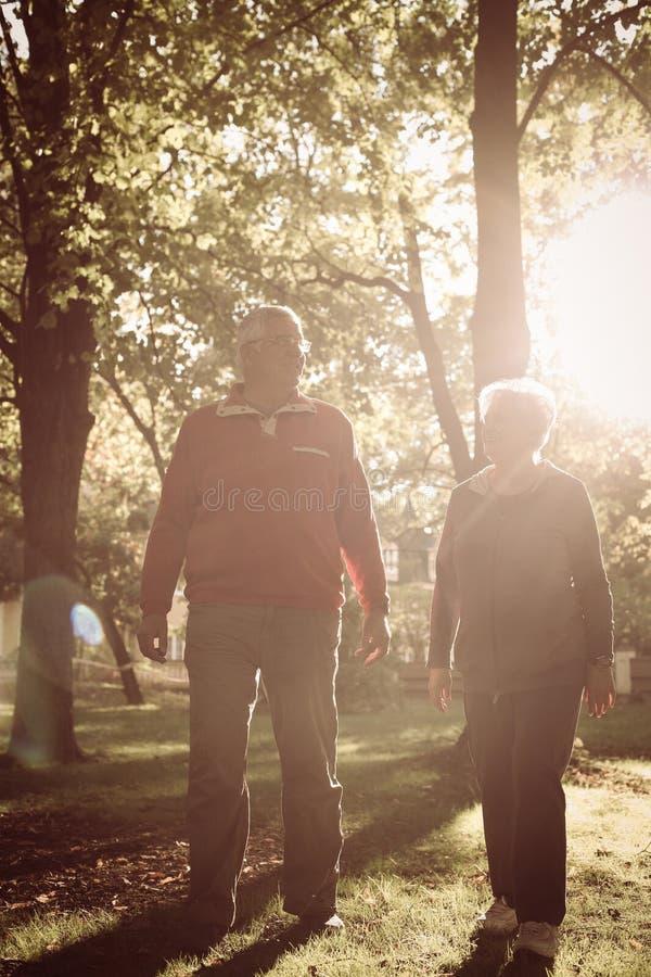 Starsza para chodzi wpólnie synklinę parkową i ma c obrazy stock