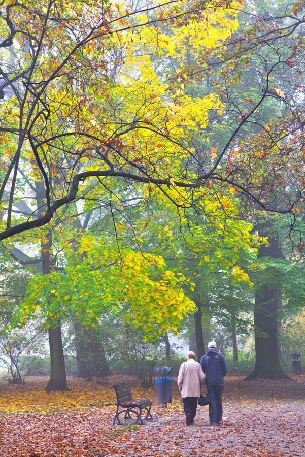 Starsza para cieszy się chodzić w mgłowym jesień parku zdjęcie stock