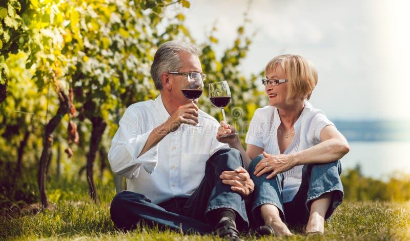 Starsza para cieszy się czerwone wino outdoors, kobiety i mężczyzna, clinking obraz stock