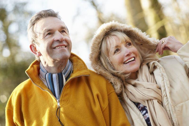 Starsza para outdoors w zimie zdjęcie royalty free