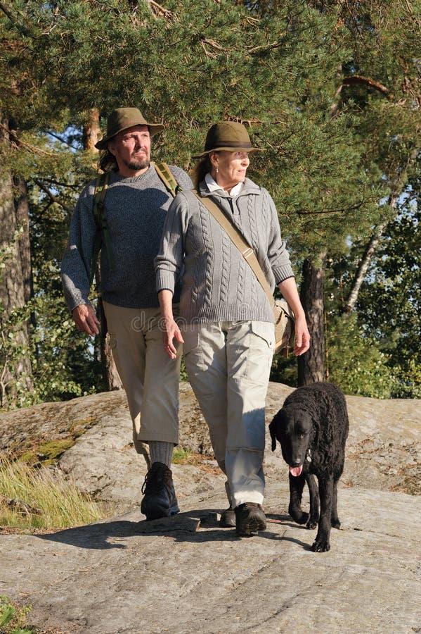 Starsza para wycieczkuje w lesie obraz stock