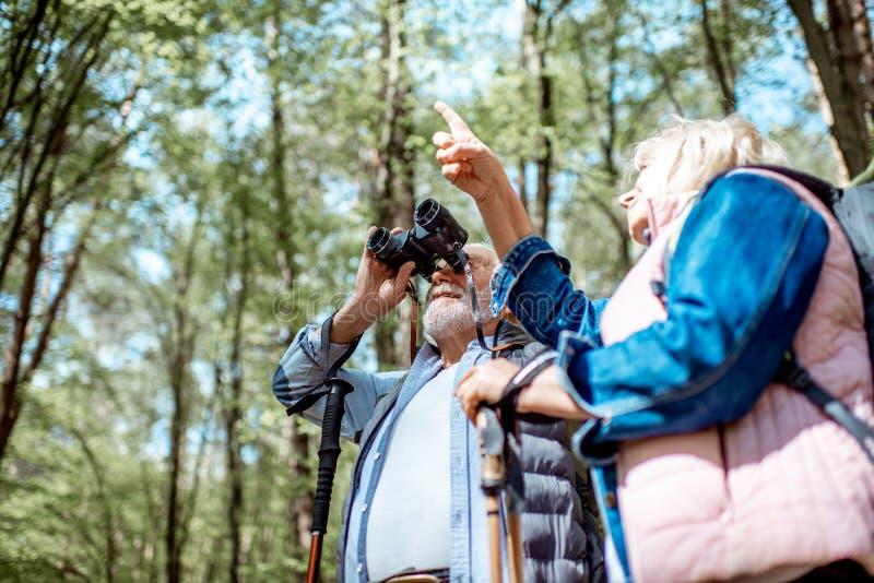 Starsza para wycieczkuje w lesie fotografia royalty free