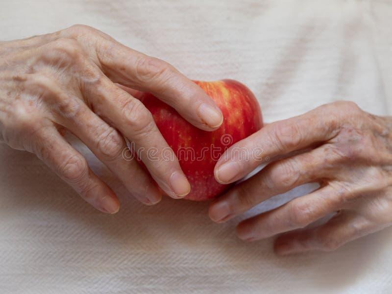 Starsze białych kobiet ręki Trzyma Organicznie Czerwonego Apple zdjęcia royalty free