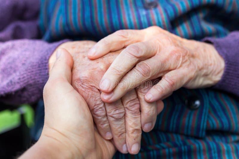 Starsze kobiet ręki zdjęcie royalty free