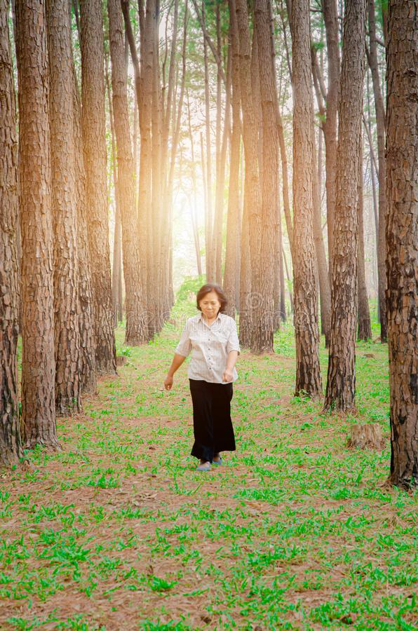 Starsze kobiety chodz? zdjęcia stock