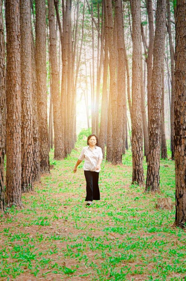Starsze kobiety chodz? zdjęcie royalty free