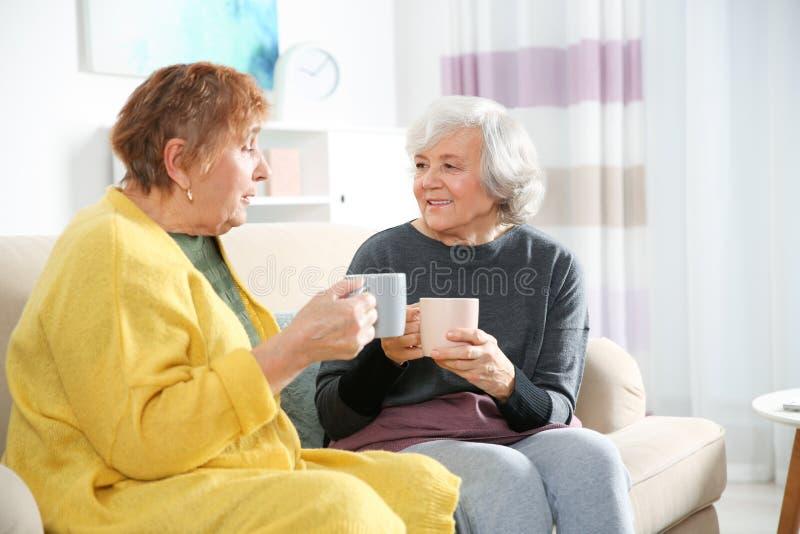 Starsze kobiety pije herbaty wpólnie fotografia stock
