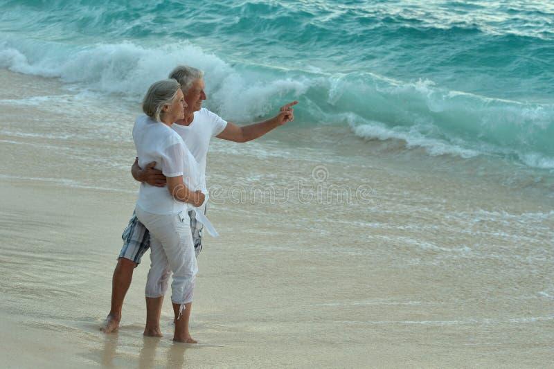 Starsze osoby dobierają się odpoczynek przy tropikalną plażą, mężczyzna wskazuje jego ręką zdjęcia stock