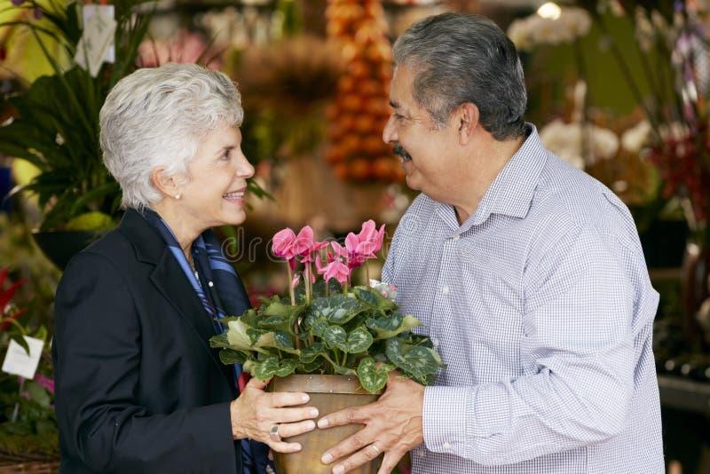 Starszego mężczyzna kupienia roślina Jako prezent Dla żony zdjęcia royalty free