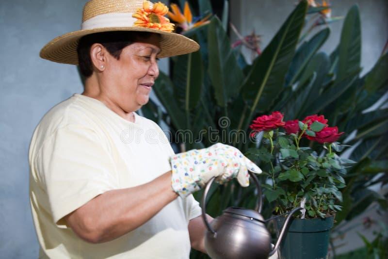 starszego ogrodnika fotografia royalty free