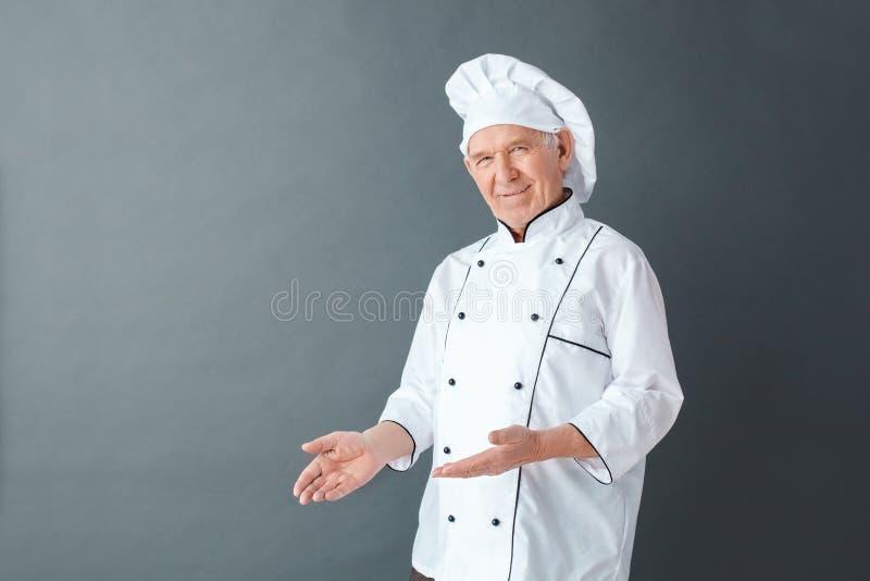 Starszego szefa kuchni pracowniana pozycja odizolowywająca na szarej seans przestrzeni dla reklamy przyglądającej kamery radosnej zdjęcie stock