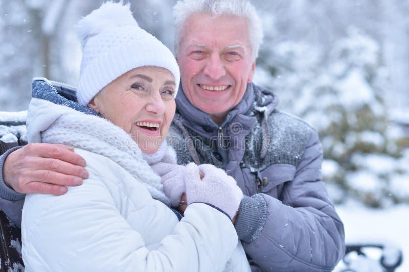 Starszej osoby para w zimie zdjęcie royalty free