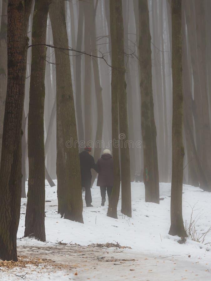 Starszej osoby pary odprowadzenie w drewnie obrazy royalty free