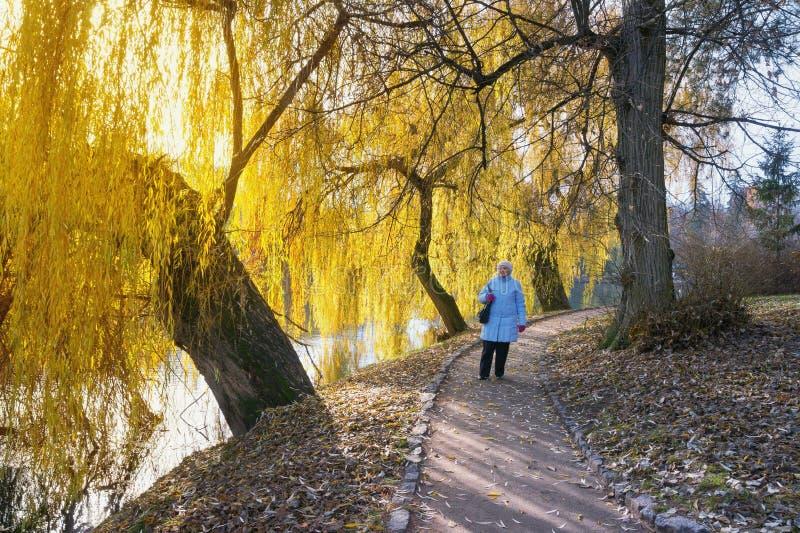 Starszy damy odprowadzenie w parku na pogodnym jesień dniu Ukraina, Uman miasto, parkowy Sofiyivka obrazy stock
