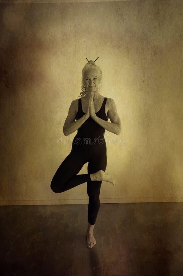 starszy drzewny joga obrazy royalty free