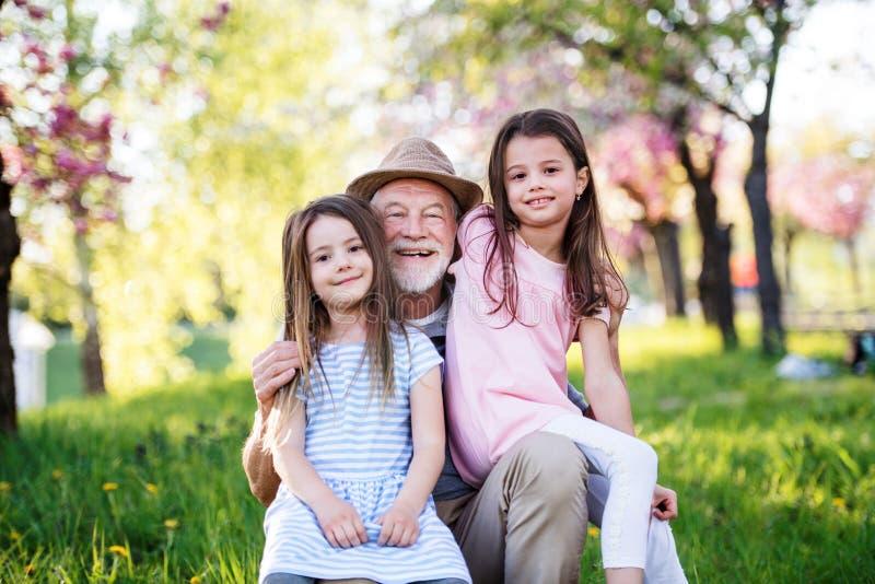 Starszy dziadek z dziadkami na dworze fotografia royalty free