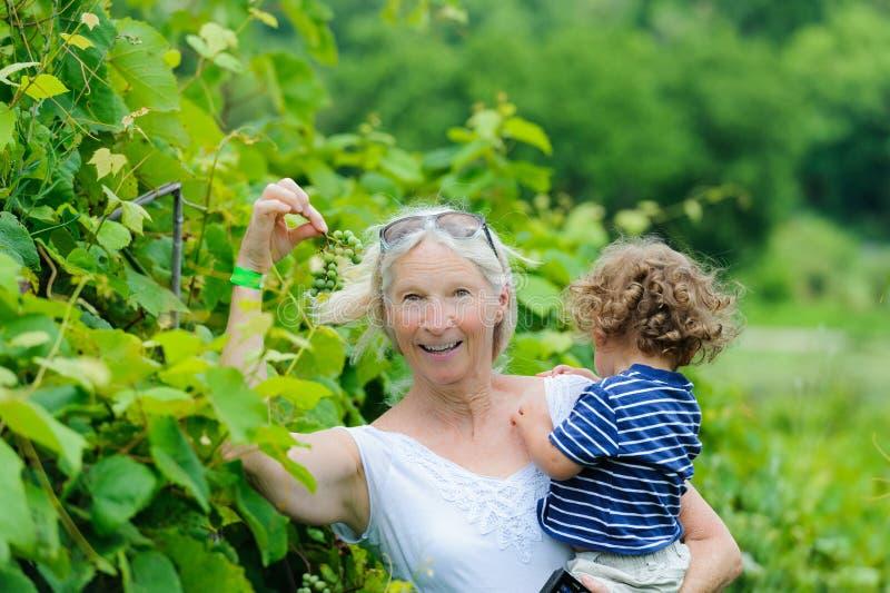 Starszy kobiety mienia dziecko w winnicy fotografia royalty free