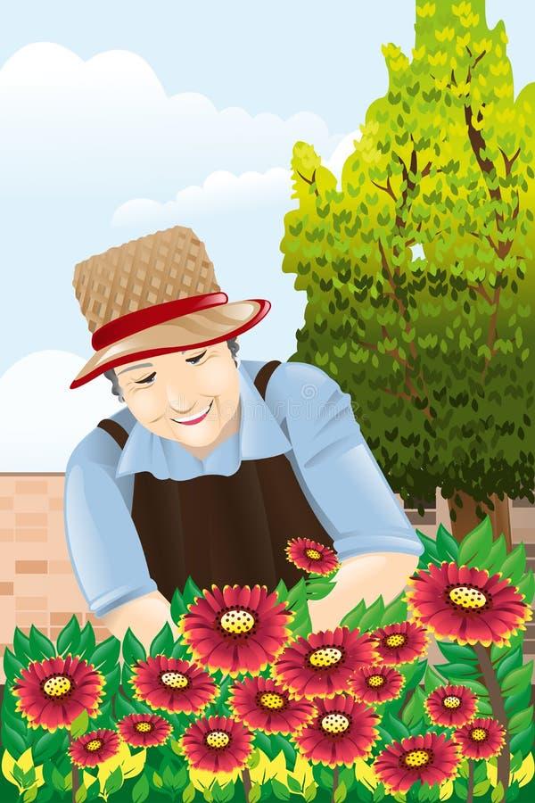 Starszy kobiety ogrodnictwo ilustracja wektor