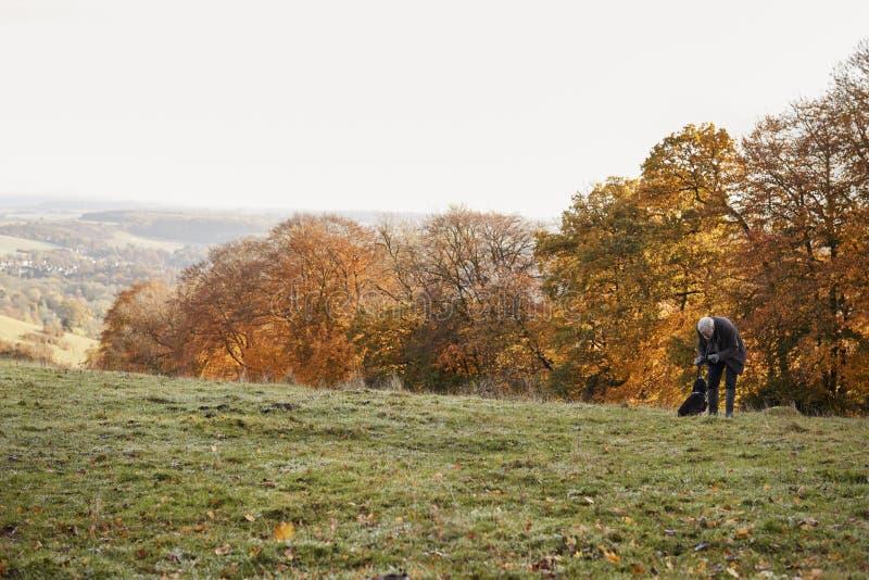 Starszy mężczyzna Bierze psa Dla spaceru W jesień krajobrazie zdjęcia stock