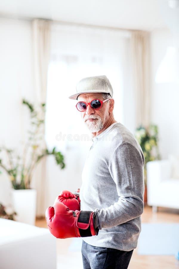 Starszy mężczyzna z bokserskimi rękawiczkami ma zabawę w domu fotografia royalty free