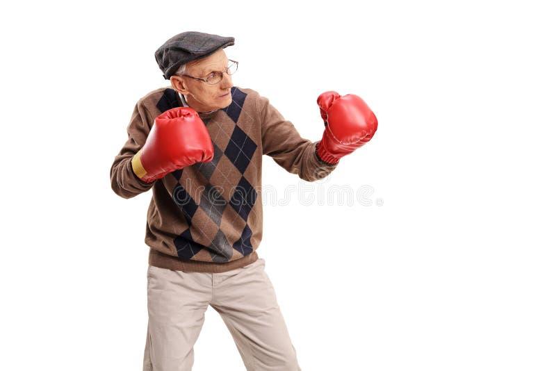 Starszy mężczyzna z czerwonymi bokserskimi rękawiczkami obrazy stock