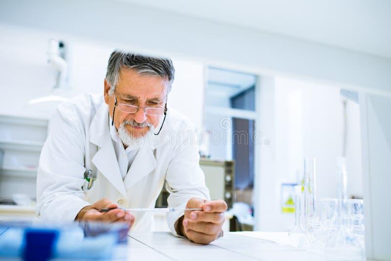 Starszy męski badacz niesie out badanie naukowe w lab zdjęcie stock
