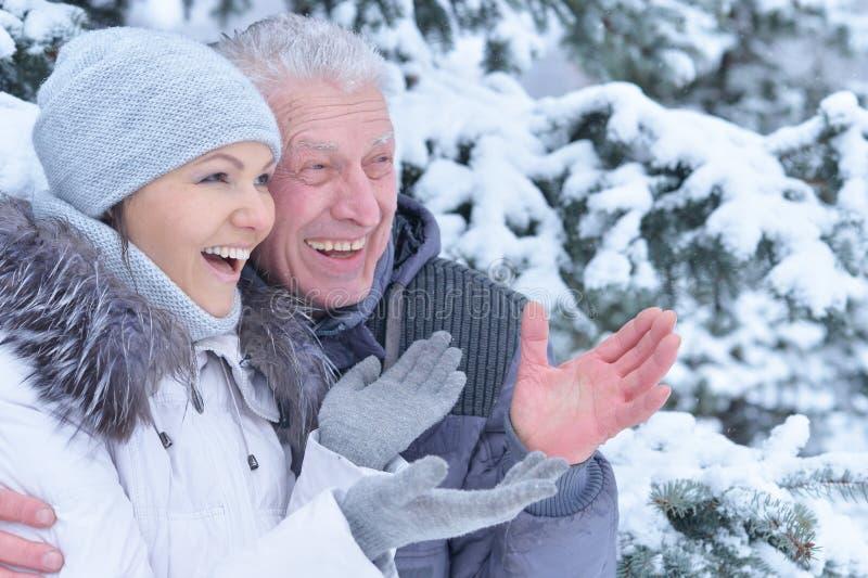starszy ojciec z córką zdjęcie stock
