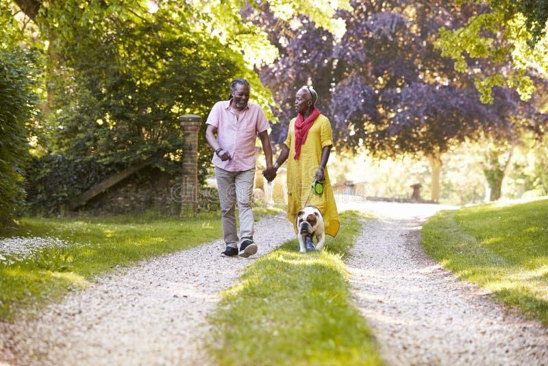 Starszy pary odprowadzenie Z zwierzę domowe buldogiem W wsi zdjęcia royalty free