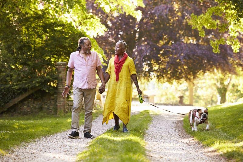 Starszy pary odprowadzenie Z zwierzę domowe buldogiem W wsi obrazy royalty free