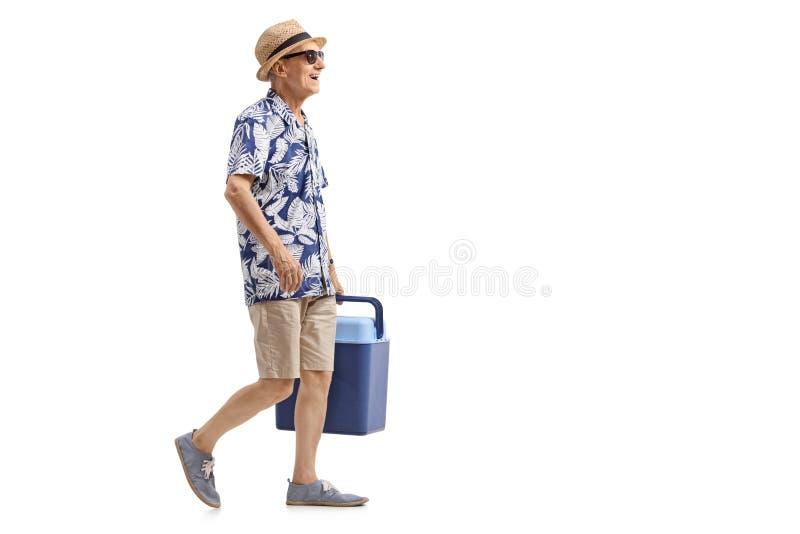Starszy turysta z chłodniczym pudełkowatym odprowadzeniem zdjęcia royalty free