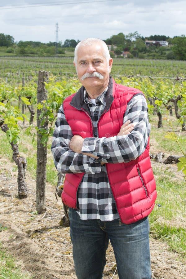 Starszy wytwórnia win właściciel z rękami krzyżował pozycję przy winnicą zdjęcia royalty free