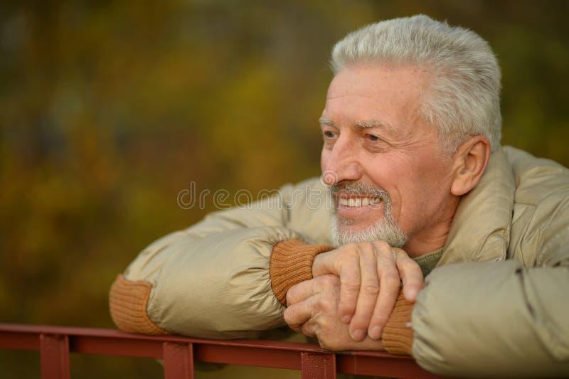 starszych osob mężczyzna park zdjęcia royalty free