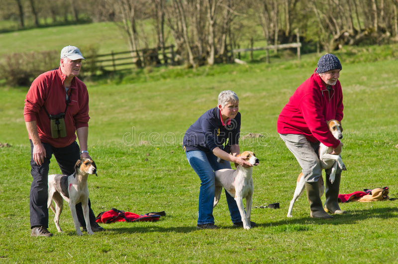 Download Start of a Hound Trail editorial photography. Image of countryside - 19236212