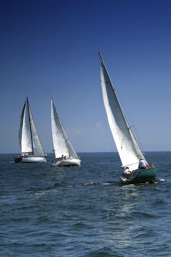 Start of a sailing regatta stock image