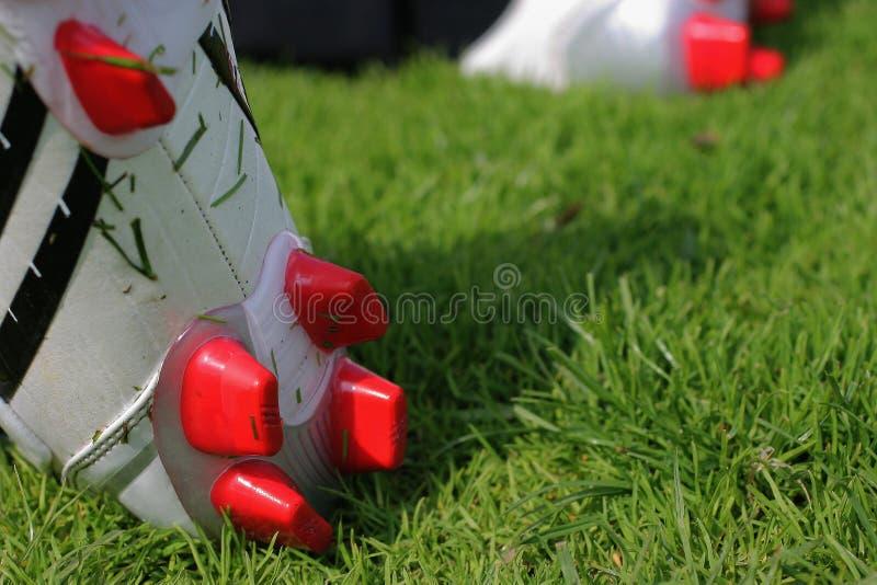 Startar Fotboll Royaltyfri Foto