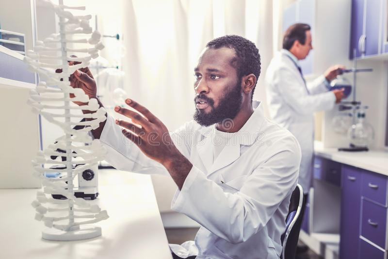 Starting clever chemist working busy in laboratory. Clever chemist. Starting clever chemist feeling occupied while working busy in laboratory sitting near stock photography