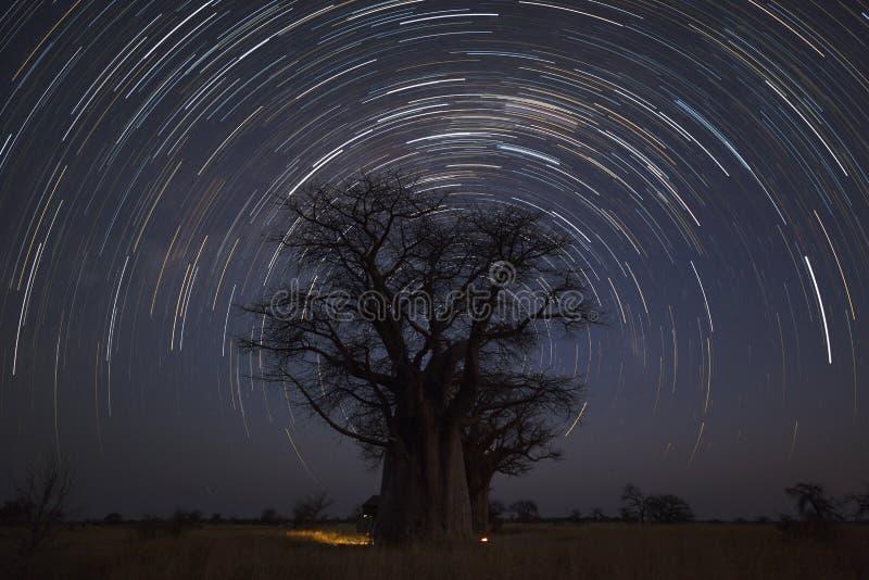 Startrail bij Baines-Baobab ` s royalty-vrije stock afbeelding
