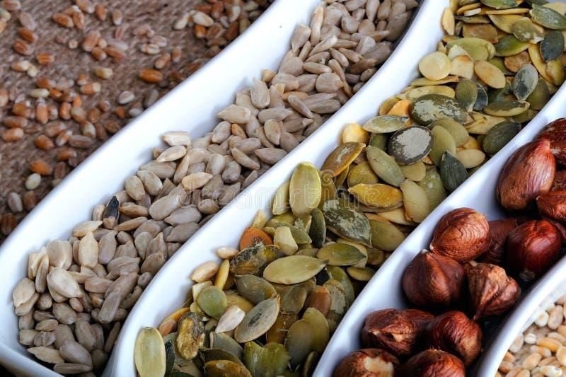 Startwerte für Zufallsgenerator und Früchte des getrockneten Getreides stockbild