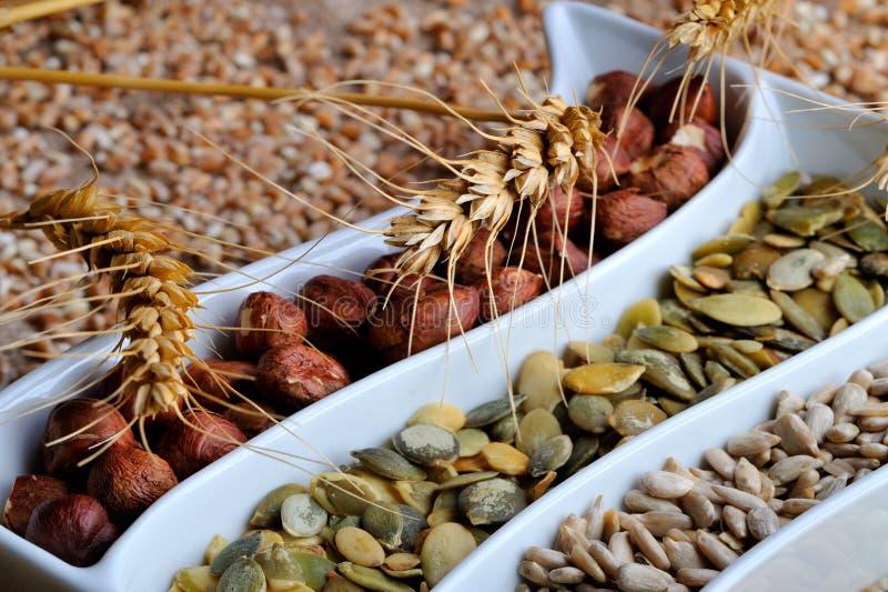 Startwerte für Zufallsgenerator und Früchte des getrockneten Getreides lizenzfreie stockfotos