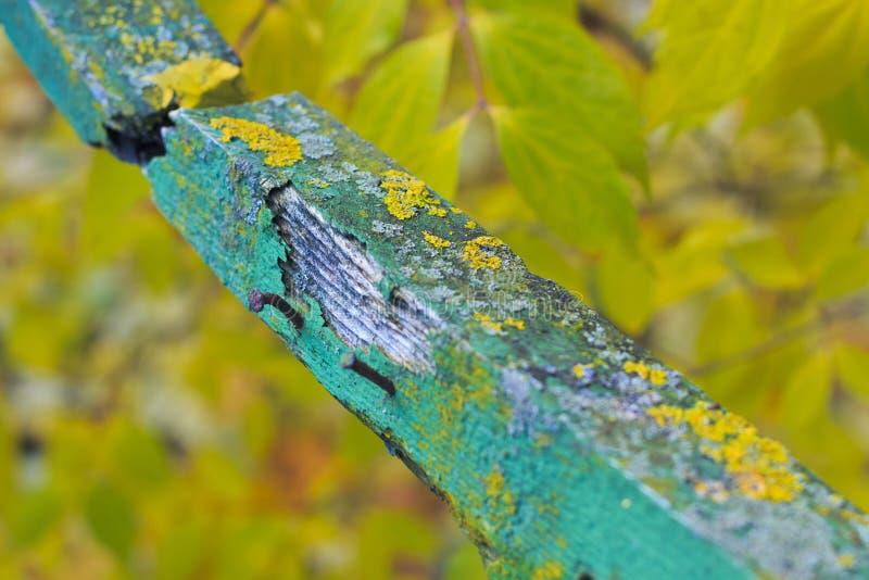 Stary łamający szalunek na jesieni tle obrazy royalty free