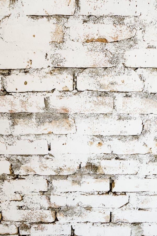 Stary ściana z cegieł bielu wzór fotografia royalty free