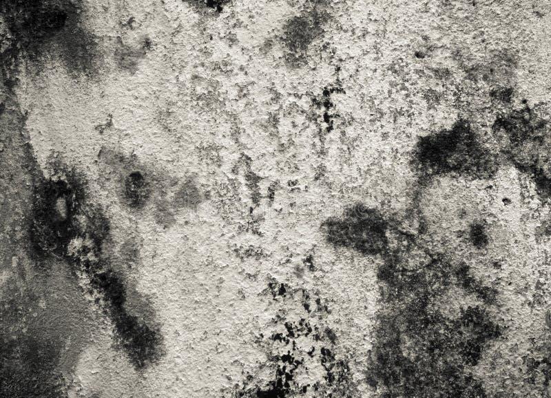 Stary ścienny tekstura szczegółu monochrom zdjęcia royalty free