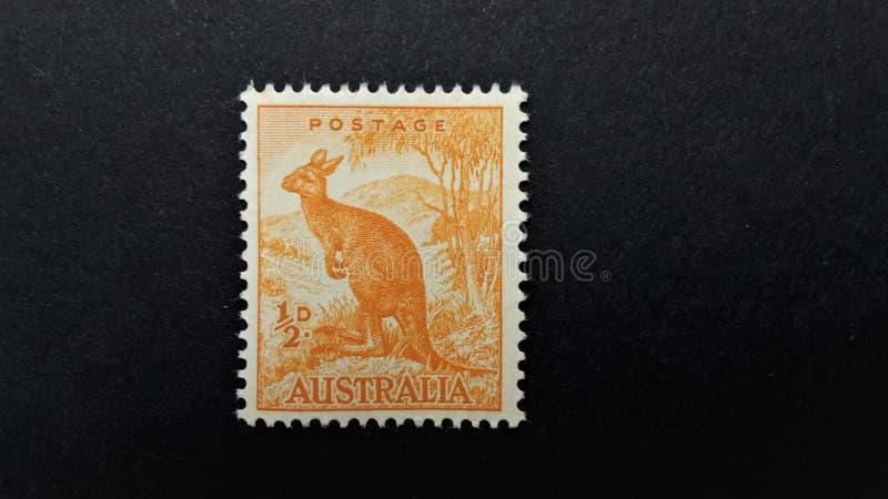 Stary Australijski znaczek pocztowy z kinguru 1/2D zdjęcie stock